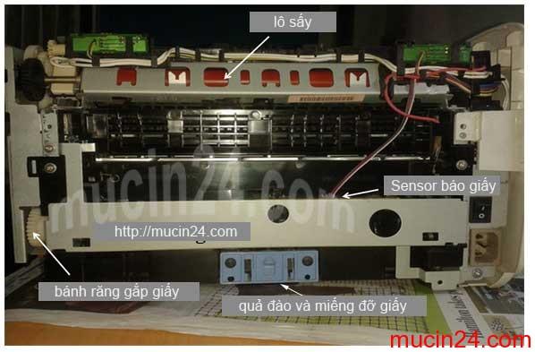 canon 2900 keo giay lien tuc - Máy In Kéo Giấy Liên Tục- Kéo Giấy Đúp- Không Kéo Giấy- Kẹt giấy